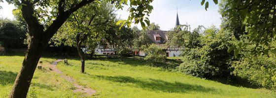 HVHS Garten