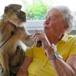 Ältere Dame mit Berberäffchen
